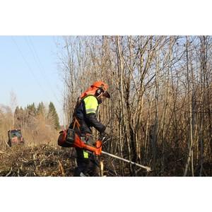 Бригады Рязаньэнерго расчистили 346 гектаров просек на учениях в Тверской области