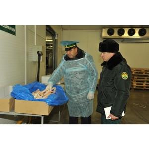Смоленские таможенники пресекли незаконный ввоз сорока тонн рыбной продукции