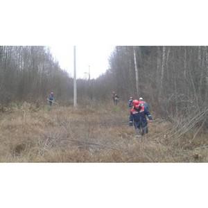 Бригады Удмуртэнерго на учениях в Тверской области  расчистили более 609 га просек ЛЭП