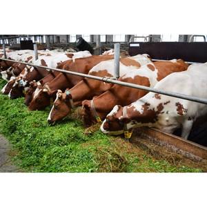 Эксперты расскажут об актуальных ветеринарных аспектах животноводства