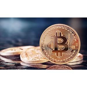 FKWallet: платежи в Bitcoin стремятся к нулю