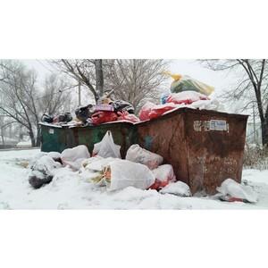 ОНФ просит региональные власти включиться в решение проблемы вывоза мусора в Семилуках