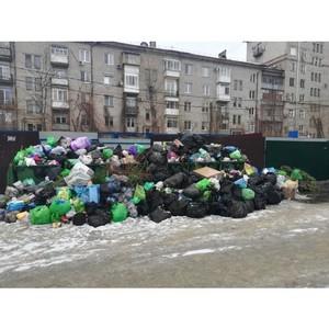 Волгоградские эксперты ОНФ оценили работу нового мусорного оператора неудовлетворительно