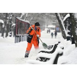 Московские активисты ОНФ проводят акцию «Снежный фронт»