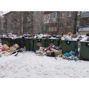 Вологодские активисты ОНФ выявили нарушения при вывозе мусора в Череповце