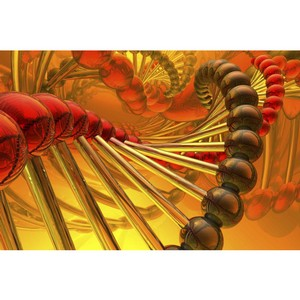Генетические причины акне. Наследственность и возможности предотвращения
