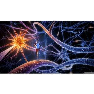 Иммунитет, генетика и образ жизни