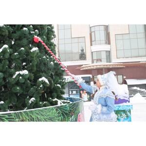 Куда можно сдать новогодние елки в Саранске?