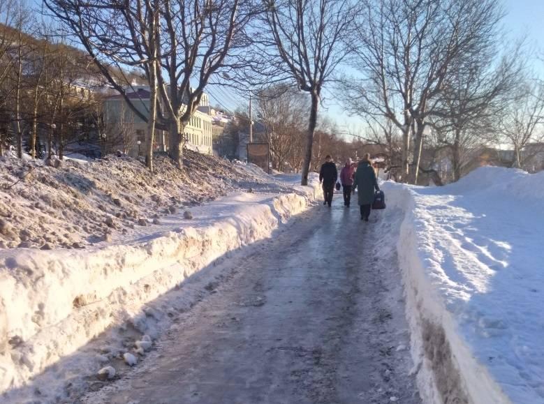 Активисты ОНФ на Камчатке проинформировали власти о недостатках содержания дорог зимой