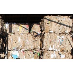 Народный фронт проводит мониторинг новых тарифов на вывоз мусора