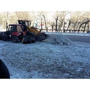 В Амурской области проходят мероприятия в рамках акции ОНФ «Снежный фронт»