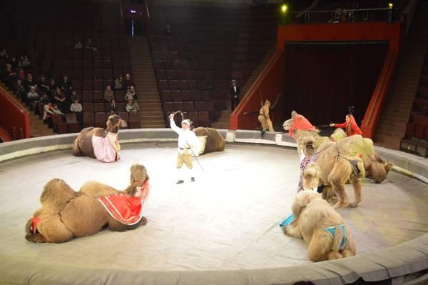 Впервые воспитанник Мариинской воспитательной колонии в качестве поощрения посетил цирк
