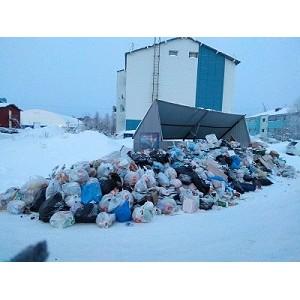 ОНФ в Югре проанализировал обращения жителей по проблемам «мусорной реформы»