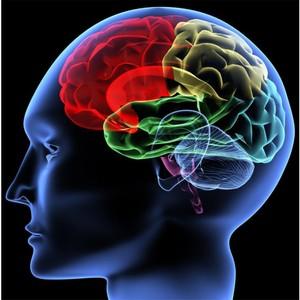 «Авинейро» запускает КИ инновационного кандидата для лечения синдрома тревоги при болезни Альцгеймера