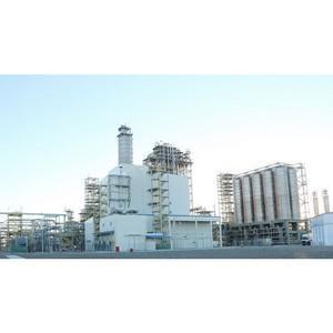 Начало поставок гранулы из Туркменистана