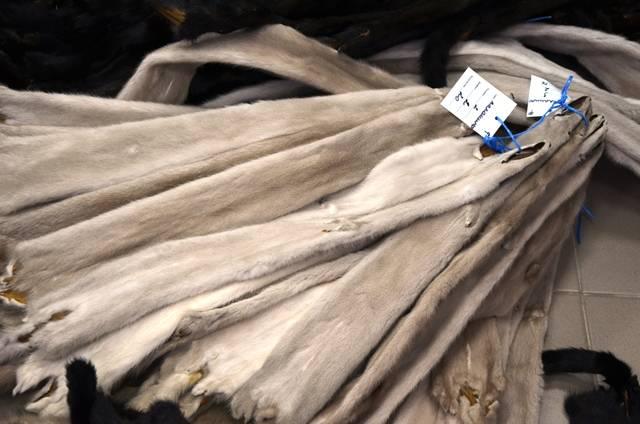 Среди канцтоваров и текстиля – шкурки норки
