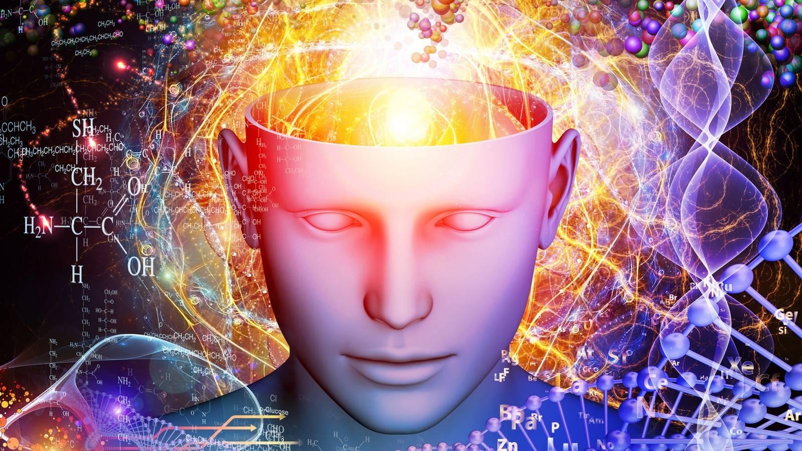 Мозг и генетика. Измерение интеллекта человека