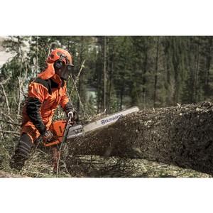 Преимущества заготовки древесины в зимнее время