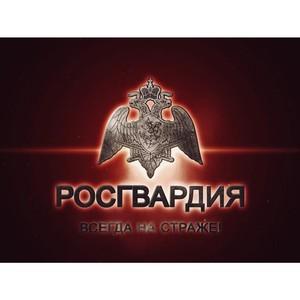 На время универсиады в Красноярском крае вводят запрет на оборот оружия