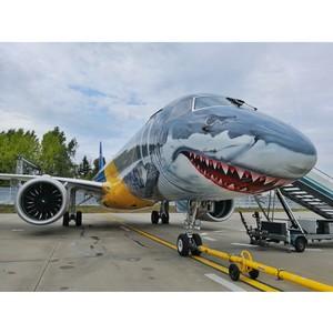 Выставка фотографий «Летающая живопись» открылась в аэропорту Домодедово