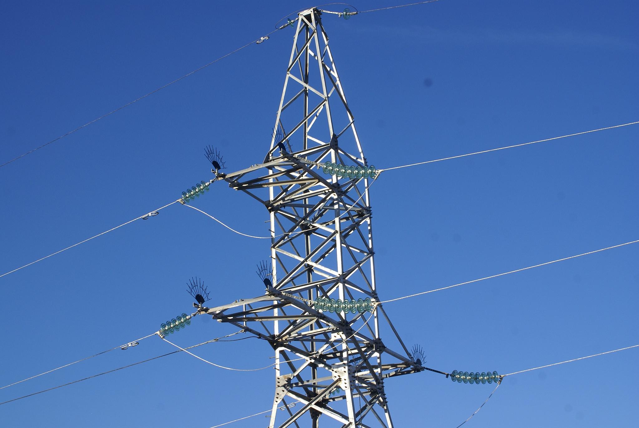 Филиал «Владимирэнерго» обеспечивает экологическую безопасность производственной деятельности
