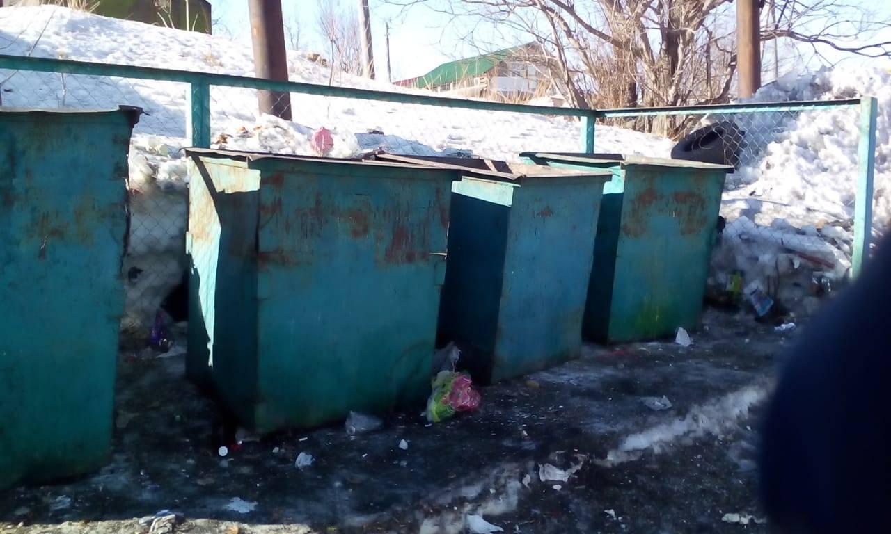 ОНФ на Камчатке призвал навести порядок на контейнерных площадках на улице Спортивной в Долиновке