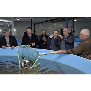 Сотрудники Тамбовэнерго посетили комплекс по разведению осетровых рыб