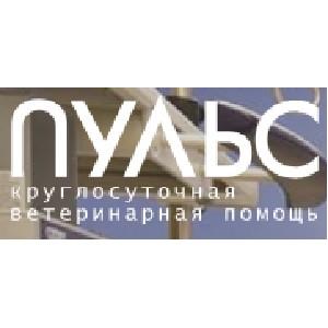 Ветеринарная клиника «Пульс» дает комментарии по ситуации со сбитым лабрадором в Малаховке