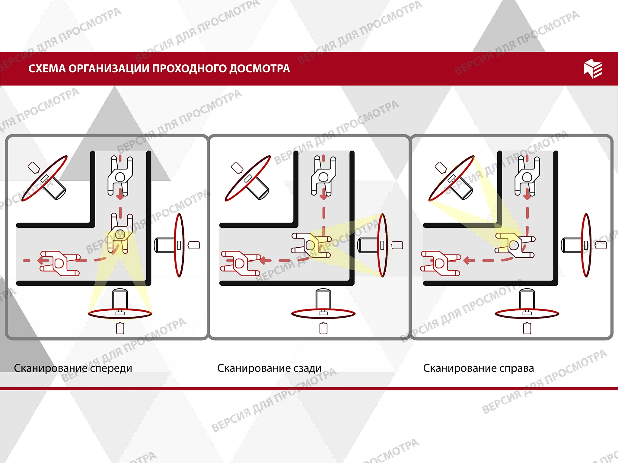 Интервью Василия Эчина: взгляд на будущее индустрии безопасности