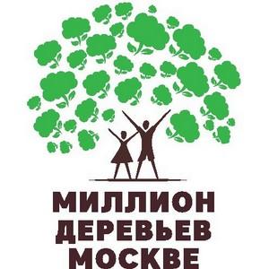 Озеленение и уборка: коллектив Главконтроля принял участие в общегородском субботнике