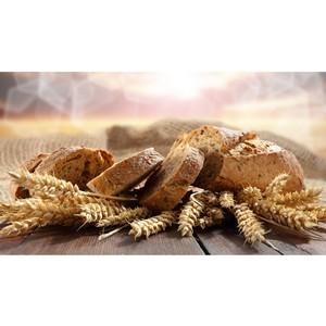 Хлеб, от которого не умирают