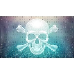 Пираты «поневоле»