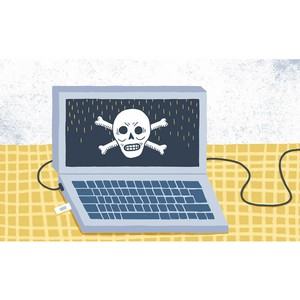 Там, где пираты порылись