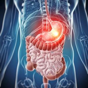 Новое в понимании проблемы микробиома и заболеваний ЖКТ