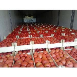 Омские таможенники вернули в Казахстан 700 кур-несушек и 32 тонны овощей