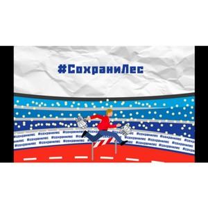 «Молодёжка ОНФ» проведет всероссийскую акцию #СохранимЛес