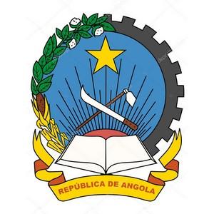 В.Володин: Отношения с депутатами парламентов стран Африки динамично развиваются