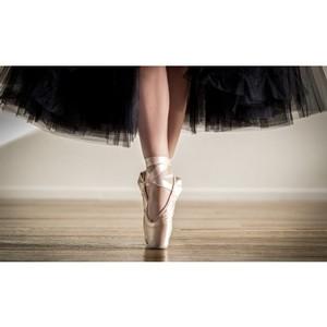 """Москва24: Фестиваль """"Мировые балетные каникулы"""" может стать ежегодным"""