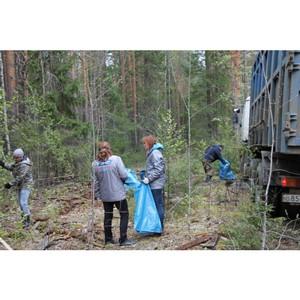 Активисты ОНФ в Коми ликвидировали свалку и высадили деревья в лесной зоне близ села Корткерос