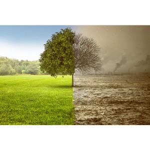 Остановить глобальное изменение климата с помощью новых источников энергии