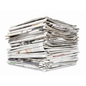 Правительство поддержало предложение ОНФ облегчить для СМИ режим предоставления обязательных экземпляров газет.