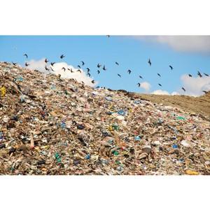 Суд обязал администрацию Вершино-Дарасуна вывезти мусор с 19 свалок