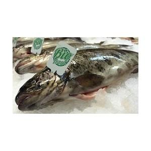 «Азбука Вкуса» вводит моду на Био-рыбу