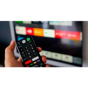 Госдума приняла во втором чтении законопроект о закреплении 22 кнопки пульта за муниципальными телеканалами