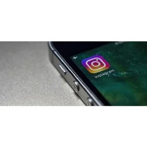 Утечка в Instagram раскрывает «личные данные» 49 миллионов пользователей, включая номера телефонов