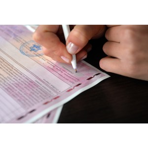 ОНФ проведет масштабный мониторинг рынка продаж полисов ОСАГО