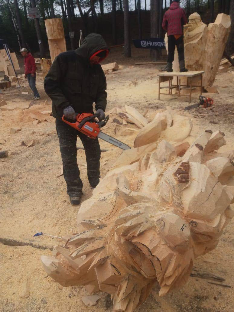 Международный фестиваль деревянных скульптур Лукоморье-2019 прошел при поддержке компании Husqvarna