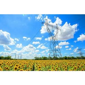 Россети обработали свыше двух тысяч заявок на портале «Светлая страна»