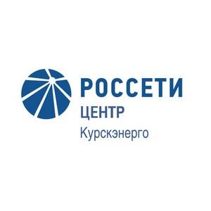 Специалисты Курскэнерго заключили свыше 2000 договоров на оказание допуслуг за 5 месяцев 2019 года