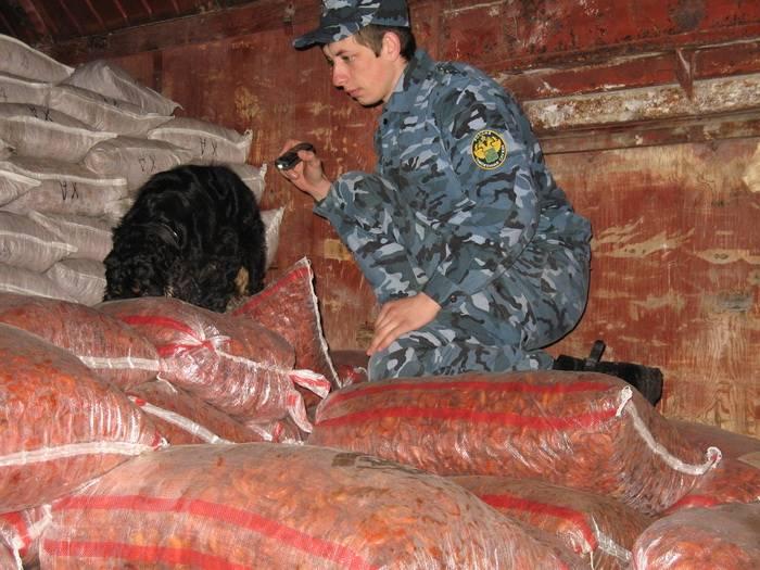 Смоленская таможня противостоит контрабанде наркотических, психотропных и сильнодействующих веществ